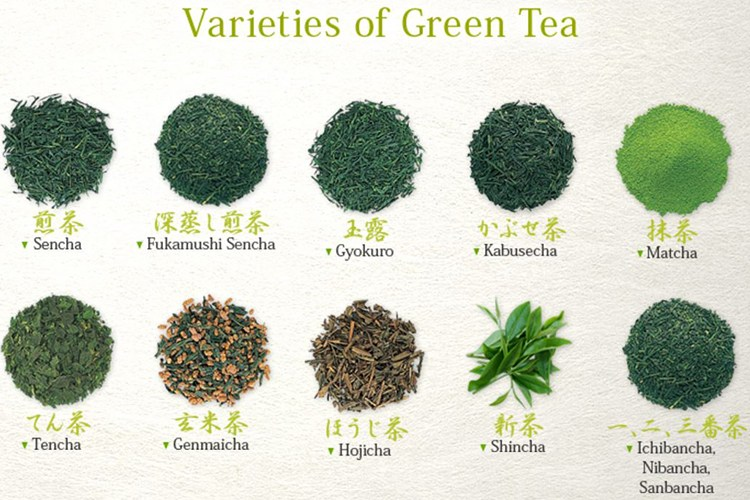 Image result for types of green tea