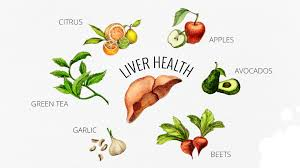 Image result for liver health